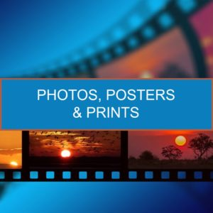 Photos, Posters & Prints